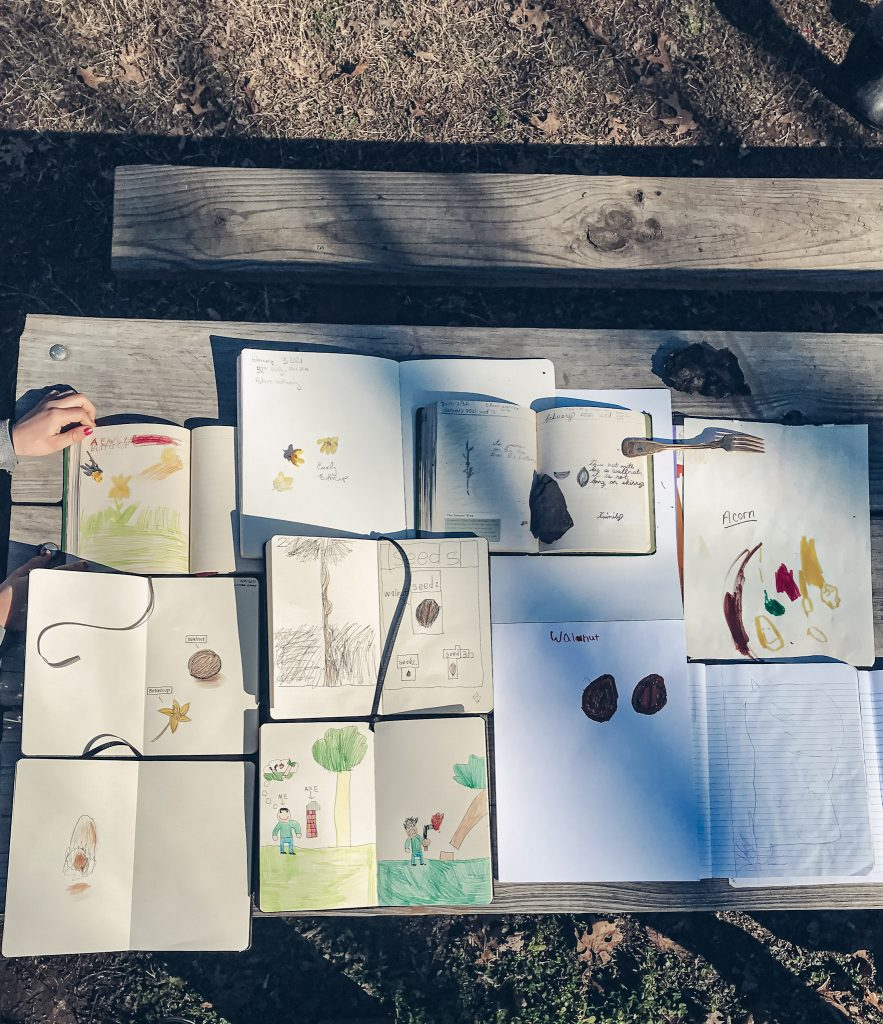 nature journals spread out with children's drawings on a picnic table