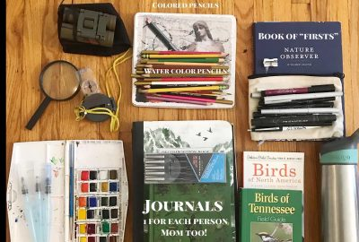 Nature Study Supplies slayed on wooden floor