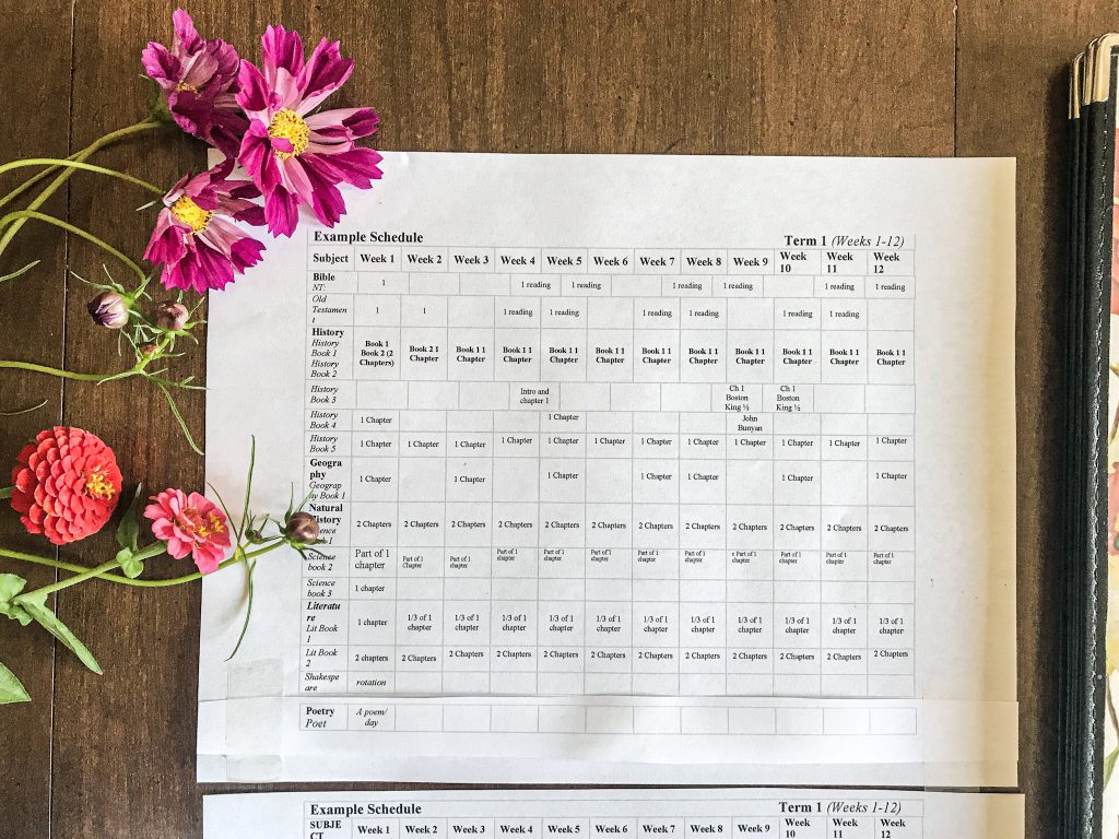 close up of AO schedule term with flowers on table top
